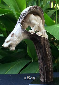 Carved Knife Handle Puma In Puma Curved Deer Antler Carving Blade Dagger
