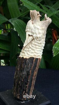 Werewolf Wolf Antler Deer Shed Carving Blade Dagger Knife Handle Free Shipping